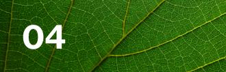 Lloyd's climate leaf 04