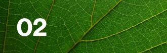 Lloyd's climate leaf 02