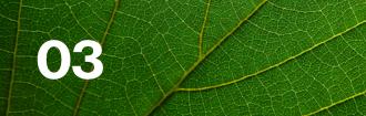 Lloyd's climate leaf 03